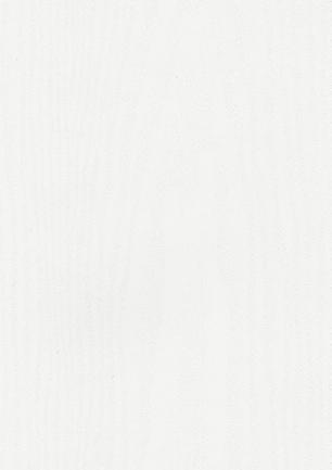 lunit-folie-02 bílá gravír