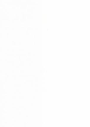 lunit-folie-03 bílá lesk