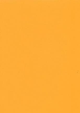 lunit-folie-07 oranžová
