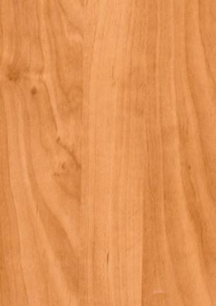 lunit-folie-22 olše