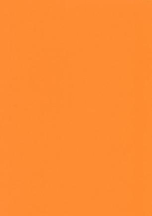 lunit-folie-42 pomeranč
