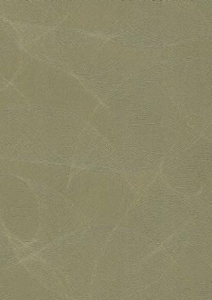 lunit-folie-77 grace gold