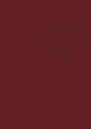 lunit-folie-86 vínová lesk