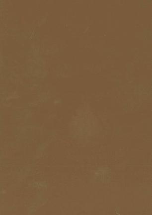 lunit-folie-95 sépia lesk