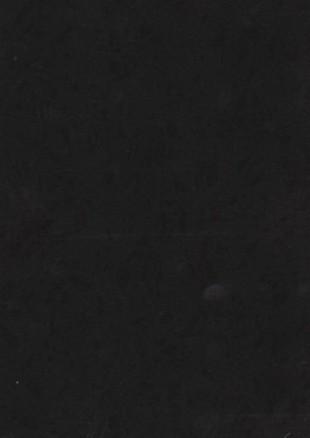 lunit-folie-116 arctic cerna