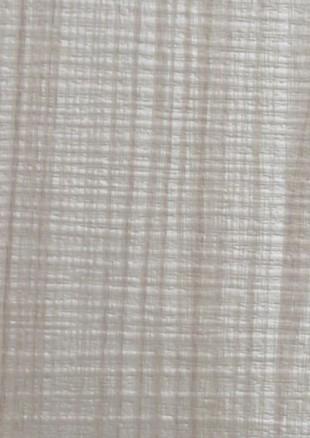 lunit-folie-128 jasan lyon